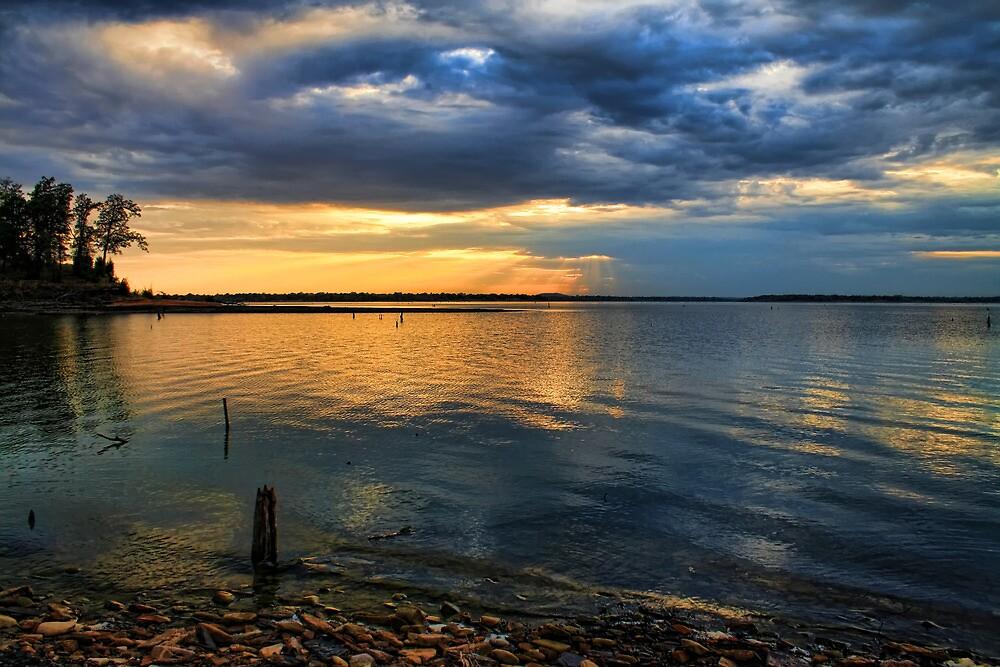 Distant Rays by Carolyn  Fletcher