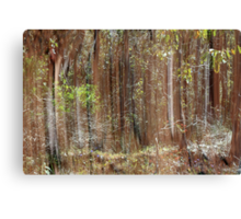 Tree Reflections Canvas Print