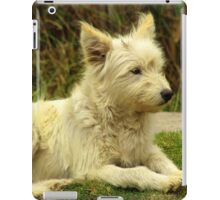 White Shaggy Dog iPad Case/Skin