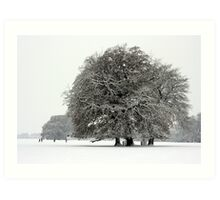 Winter in Petworth Park Art Print
