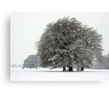 Winter in Petworth Park Canvas Print