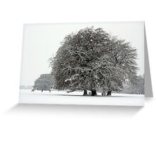 Winter in Petworth Park Greeting Card