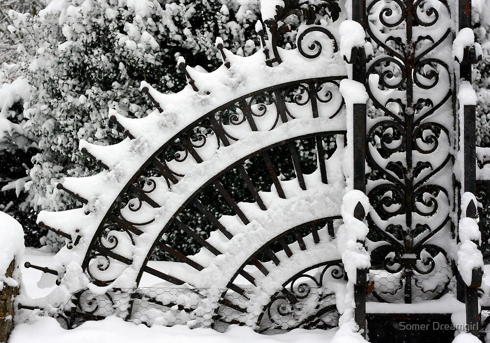 Iron Gate, Petworth Park. by Emma S