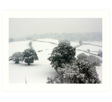 Snowy Rolling Fields, Petworth. Art Print