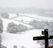 Snowy Fields, Petworth. by Emma Turner