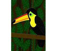 Toucan in the Jungle Photographic Print
