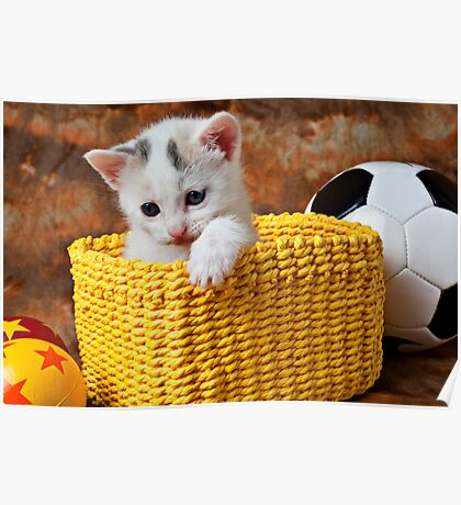 Kitten in yellow basket Poster