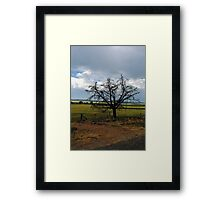 Country fields Framed Print
