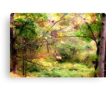 Time for Rest and Sustenance Canvas Print
