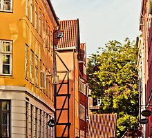 Copenhagen Indian Summer by Nick  Karvounis Photography