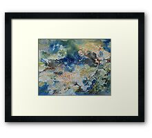Hide And Seek in Bubbles and Seaweed Framed Print