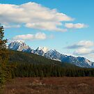 Moose Meadows by Keri Harrish