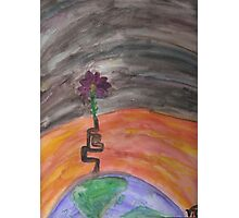Change Climate Photographic Print