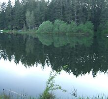 Mirror Lake by Phil  Neuman