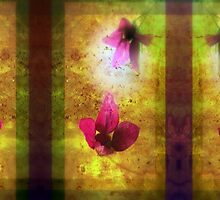 marriage of Titania; Salmon berry floral duet by Dawna Morton