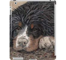 Mud Magnet iPad Case/Skin