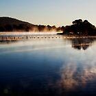 Fog Lake by Mark Braham