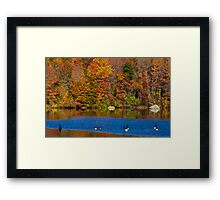 Natures Colorful Autumn  Framed Print