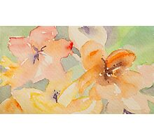 Flowers pastelic abstract Photographic Print