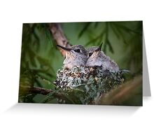 Bosom Buddies -- Anna's Hummingbird Nestlings Greeting Card