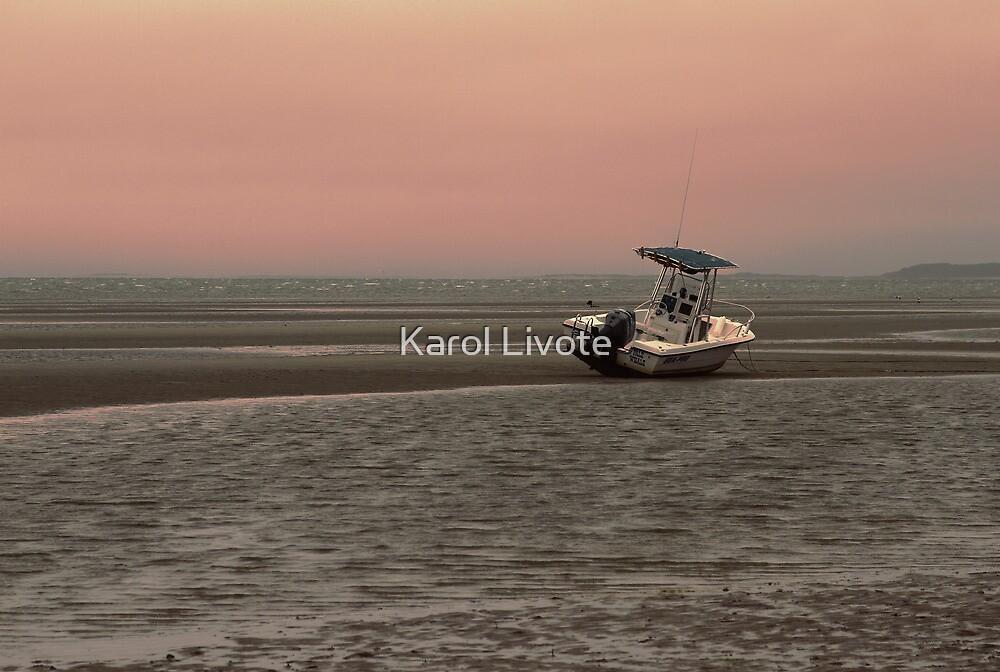 Where Did The Tide Go by Karol Livote