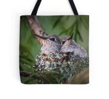 Bosom Buddies -- Anna's Hummingbird Nestlings Tote Bag