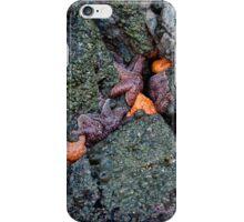 orange and purple starfish on the oregon coast iPhone Case/Skin