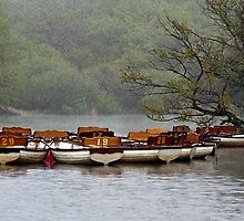 Boats waiting for rowers by Gary Rayner