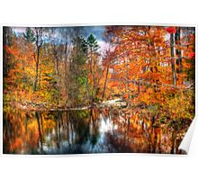 Autumn Stream in the Park Poster