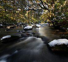 Snowy Stream by Michael Treloar