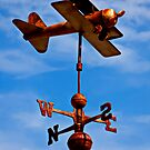 Biplane weather vane by Garry Gay