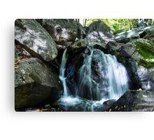 Trout Brook Falls Canvas Print