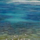 Seagulls at Port Macdonnell by Freda Surgenor