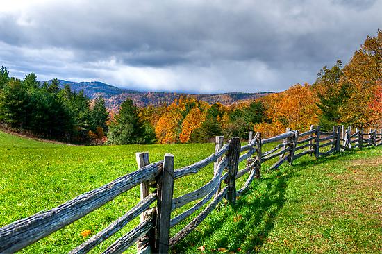 Autumn Gold by Joe Jennelle