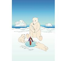 Polar Bear  Christmas Photographic Print