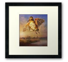 spring flight / american woodcock Framed Print