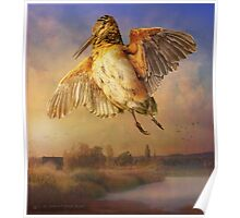 spring flight / american woodcock Poster