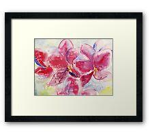 Orhids Framed Print