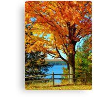Fall Colors up North, Michigan Canvas Print