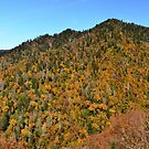 Smoky Mountain Panorama by Jimmy Phillips