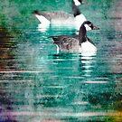 Geese by Roma Czulowska