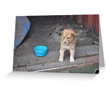 Puppy Cathy Greeting Card