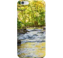 Black River Reflections iPhone Case/Skin