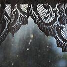 Lace by Catherine Davis
