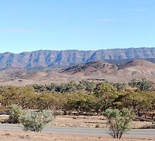 Elder Range - Flinders Ranges by Ian Berry