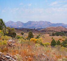 Wilpena Pound in the distance - Flinders Ranges by Ian Berry