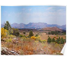 Wilpena Pound in the distance - Flinders Ranges Poster