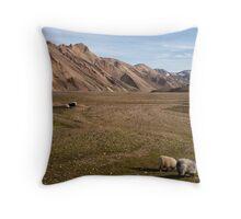 The Residents of Landmannalaugar Throw Pillow