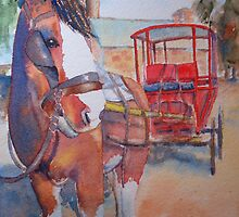 Patient Swan Hill horse by swannymum