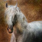 Andalusian horse portrait by Julia Shepeleva